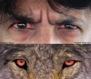 Abdullah Minor Wolf Eyes.