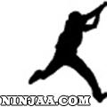Ninjaa.com (1)