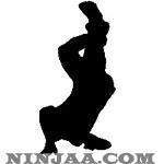 Ninjaa.com (16)