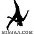 Ninjaa.com (2)