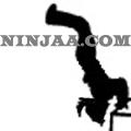Ninjaa.com (20)