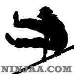 Ninjaa.com (28)
