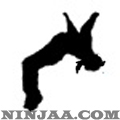 Ninjaa.com (3)