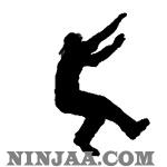 Ninjaa.com (5)