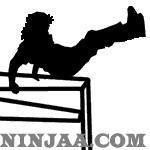 Ninjaa.com (6)