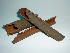 grfa-cinnamon_bark